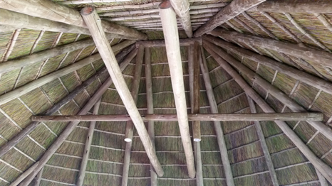 Cape Reed Ceiling