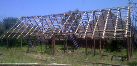 Building of thatch roofs