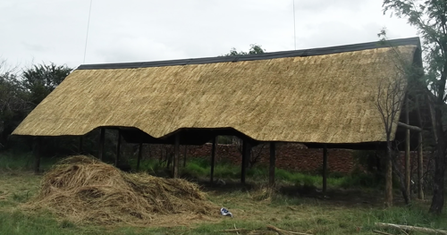 Lapa and thatching