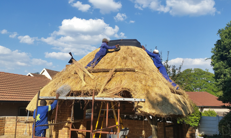 Thatching grass for Lapa.