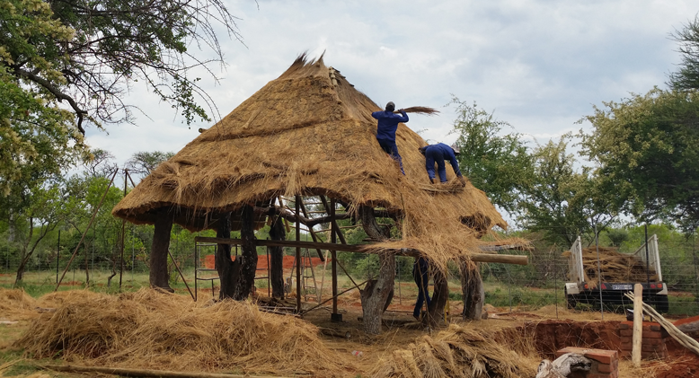Busy thatching a new thatch roof